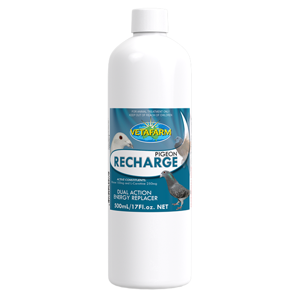 Product_Pigeon-Recharge-500ml